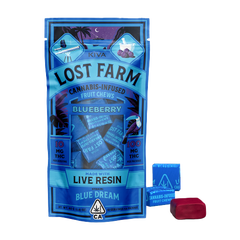 BLUEBERRY CHEWS - LOST FARMS