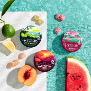 Brand new @MadeByKiva Camino Sours just landed! ✈️ These tart, terpene-tailored treats have us missing summer already. Dusted in sour sugar and bursting with fruity flavor, these gummies will have you drooling for more!